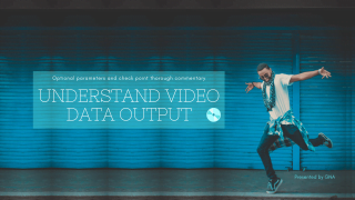 Understand video data output_パワーディレクター_出力方法_パラメータ設定の解説